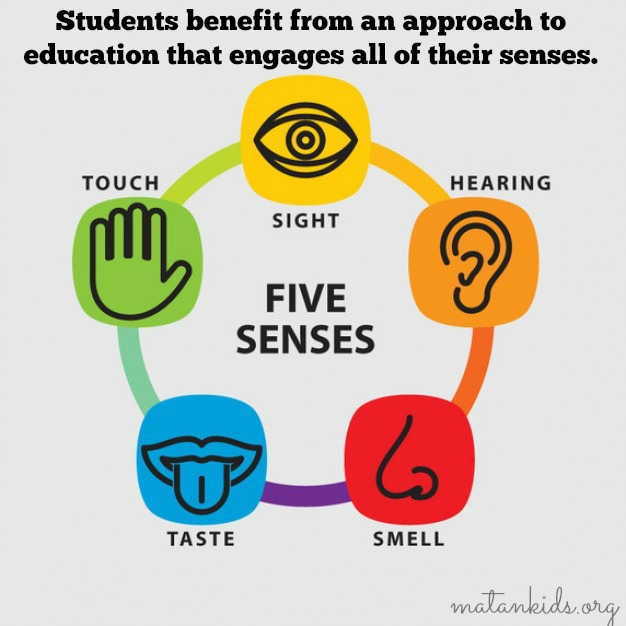 multi sensory learning Teaching to the strengths of the different learner we offer multisensory reading instruction and academic testing and tutoring in reading, writing and.